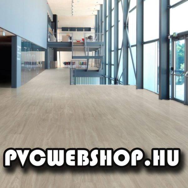 IVC Ultimo Click Moduleo 55